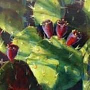 Cactus Shadows Art Print