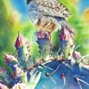 Cactus Wren Art Print