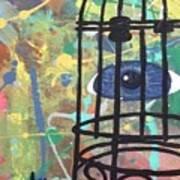 Caged Vision  Art Print
