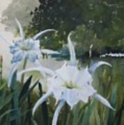 Cahaba Lilies Art Print