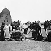 Cairo: Group Of Camels Art Print