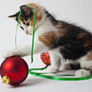 Calico Kitten And Christmas Ornaments Art Print