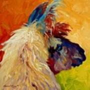 Calico Llama Art Print