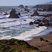 California Coast Sonoma Art Print