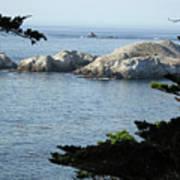 California Coast Vii Art Print