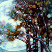 California Cypress Art Print