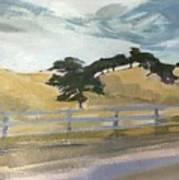 California East Bay Oaks Art Print