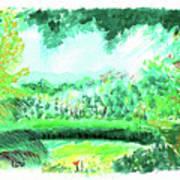 California Garden Art Print