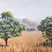 California Landscape. Fall Art Print