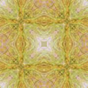 California Spring Oscillation Field Art Print