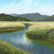California Wetlands 2 Art Print