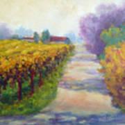California Wine Country Art Print