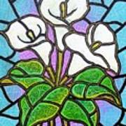 Calla Lilies 3 Art Print