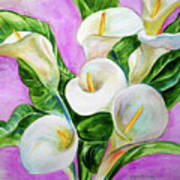 Calla Lillies 3 Art Print