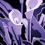 Calla Lillies Lavender Art Print