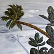 Calm Beach Palm Art Print