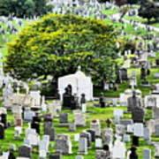 Calvary Cemetery From Above Art Print