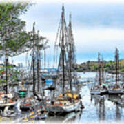 Camden Bay Harbor Art Print