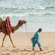 Camel Ride On Beach Art Print