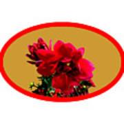 Camellia Bg Gold Art Print