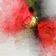 Camellia Burst Art Print