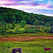 Canaan Valley Evening Impasto Art Print