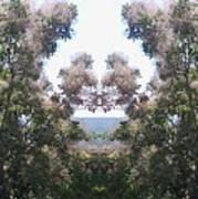 Candy Floss Greek Bush Art Print