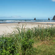 Cannon Beach And Purple Bloom Art Print