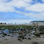 Cannon Beach Tide Pools Art Print