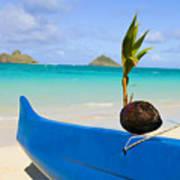 Canoe And Coconut Art Print