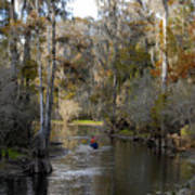 Canoeing In Florida Art Print