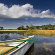 Canoeing In The Everglades Art Print by Debra and Dave Vanderlaan