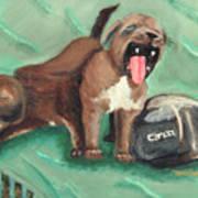 Canon Pups Art Print