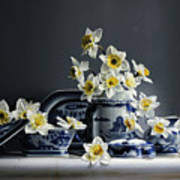Canton With Daffodils Art Print