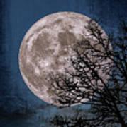 Winter Moon Art Print