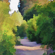 Canyon Path IIi Painterly Art Print