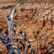 Canyon View Nevada Art Print