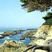 Cape Arago, Or. Art Print