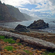 Cape Arago Oregon Art Print
