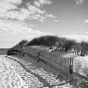 Cape Cod Beach Entry Art Print