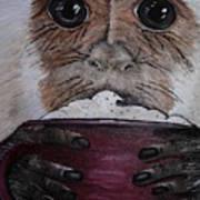 Capuchino Art Print