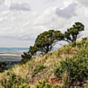Capulin Volcano View Panorama New Mexico Art Print