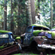 Car Lot In The Forest Art Print