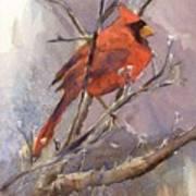 Cardinal - Male Art Print