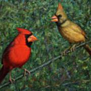 Cardinal Couple Print by James W Johnson