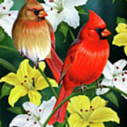 Cardinal Day 2 Art Print by JQ Licensing