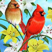Cardinal Day Art Print