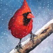 Cardinal In Winter Art Print