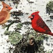 Cardinal Pair II Art Print