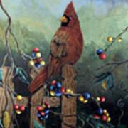 Cardinal Sitting On A Fence Art Print